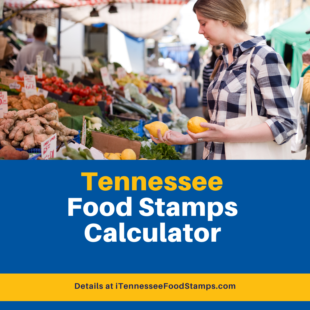 """""""Tennessee Food Stamps Calculator"""""""